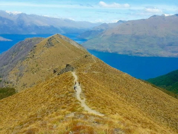 queenstown mountain run feature image
